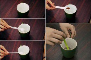 Bí quyết làm bánh bông lan trong vòng 3 phút-hình số-2